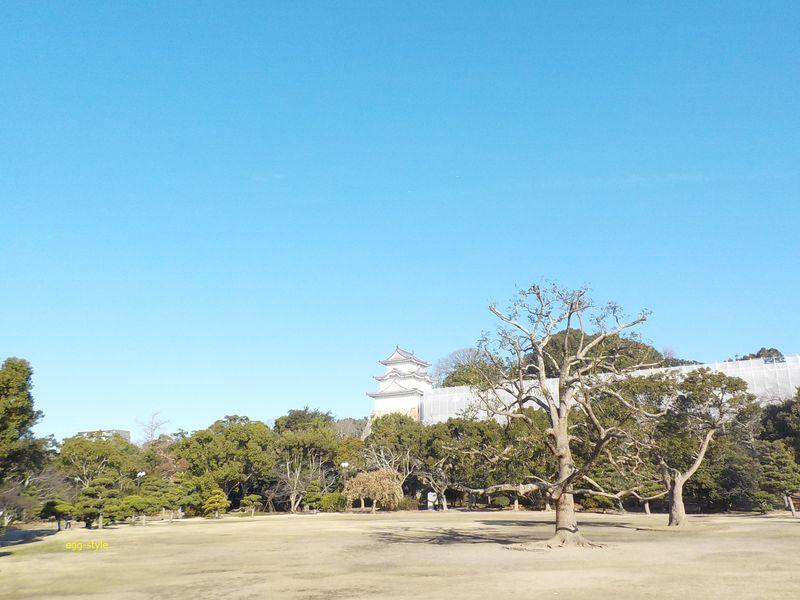 県立明石公園から明石城址を見る