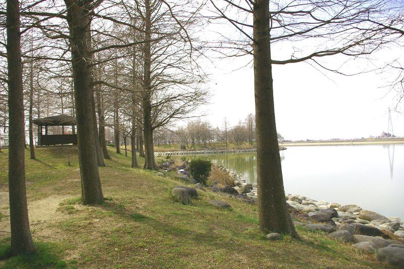 天満大池公園