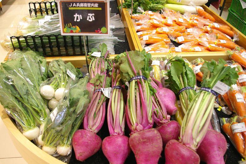 野菜も朝獲り