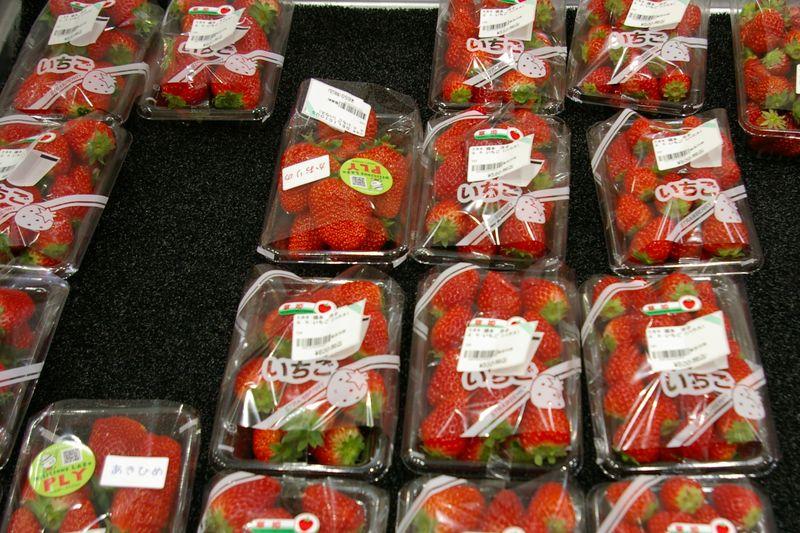 生産者が並べるイチゴはたくさん