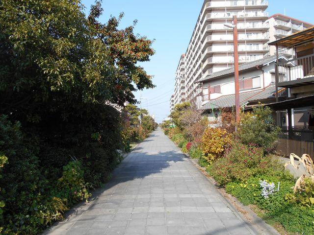 別府鉄道廃線跡を歩く:住宅地を抜ける