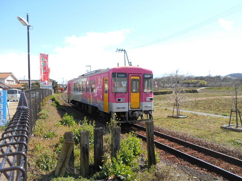 北条鉄道のピンクの列車
