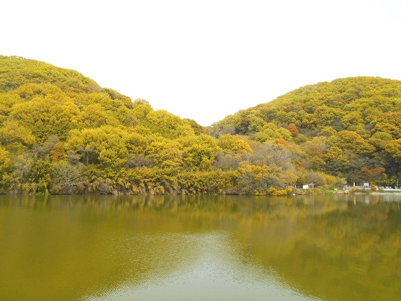 穴虫池と馬坂峠、山の色がまた変わった
