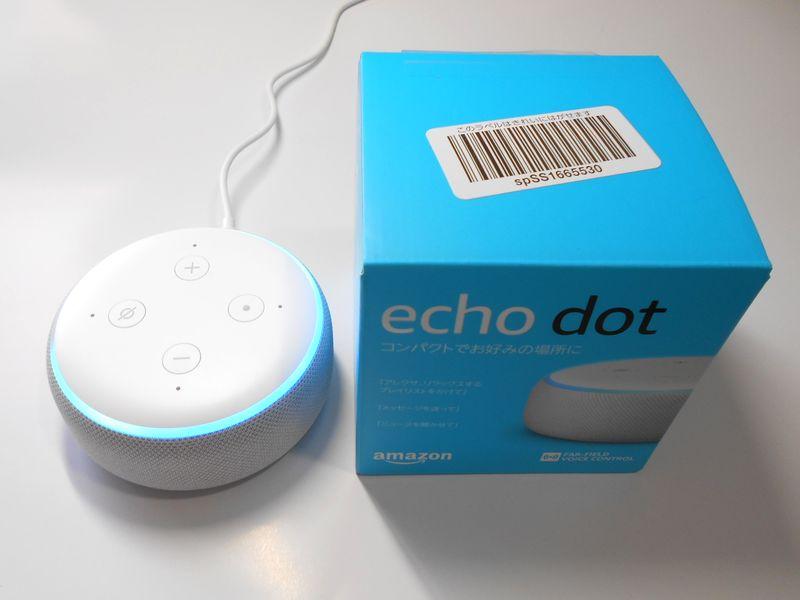 echo dot は小さな箱に入って、翌日にアレクサを連れてきた