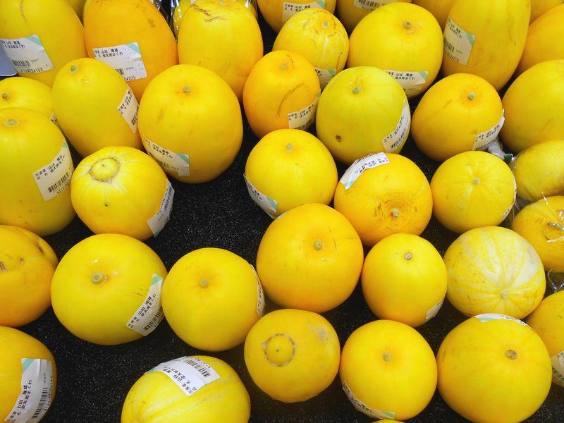 瓜 黄色の瓜がきれい