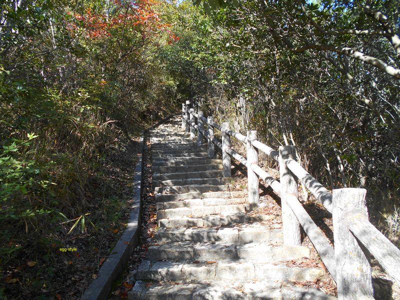 多くは、整備された階段が続く参道