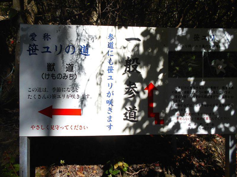 けもの道ルート 笹ユリの道 入口分岐