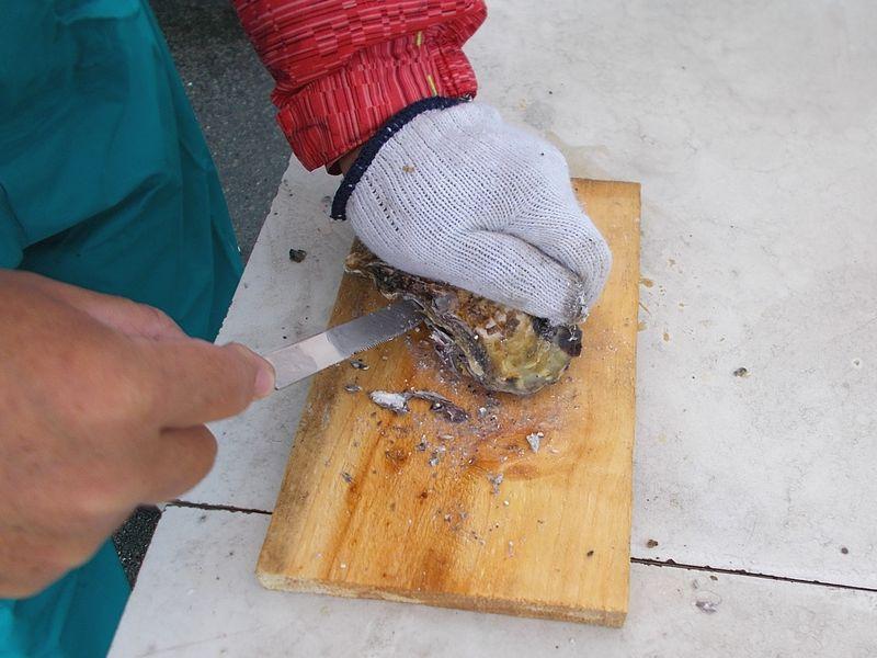ナイフが入れば、改めて貝柱方向に動かし、貝柱だけを切る