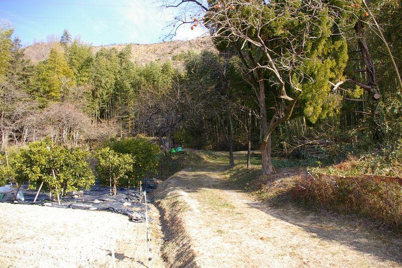 経政神社への里山の道