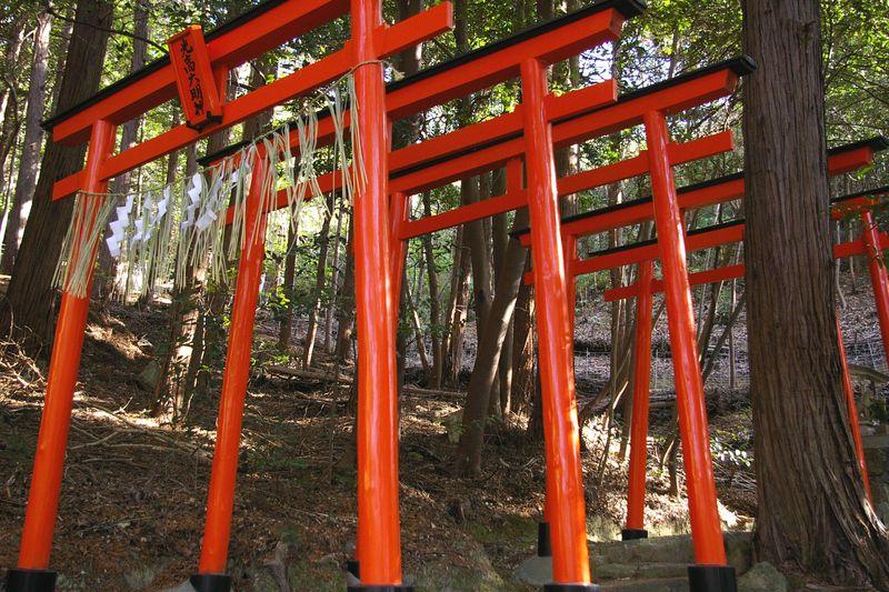 光高大明神(経政神社の摂社か末社) 山の木々の中の赤鳥居はきれいだ