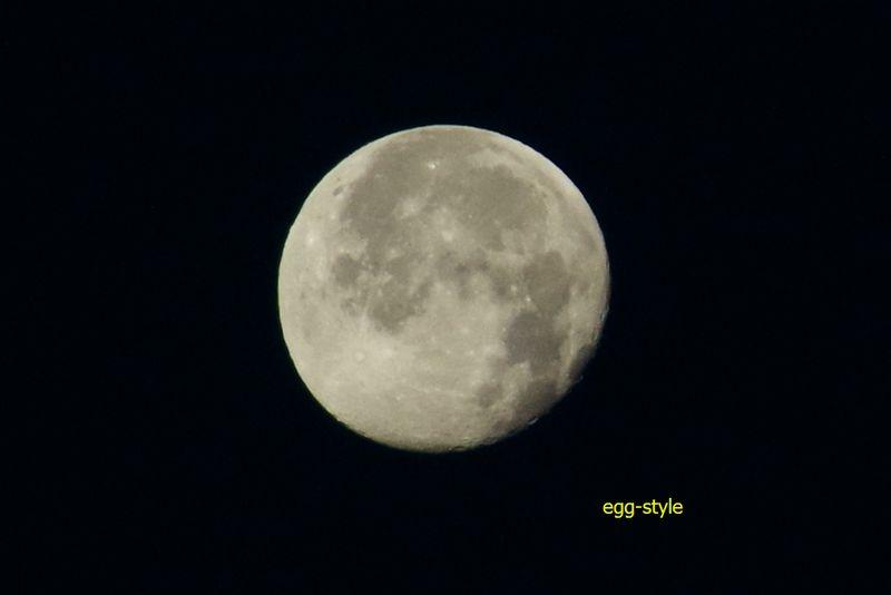 月齢 17.4、月の入8:47 の残月が西の空には浮かぶ