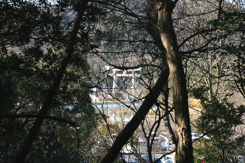 小さな山を越えると阿弥陀の鹿嶋神社の鳥居が見えた 人と車の多さで今回は勘弁してもらう
