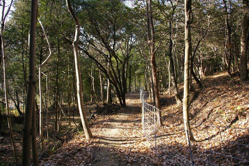 経政神社から里山の道を歩き鹿嶋神社に向かう 柵は猪避けで全長4.3km