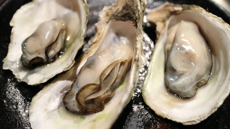byPixabay oyster-989182
