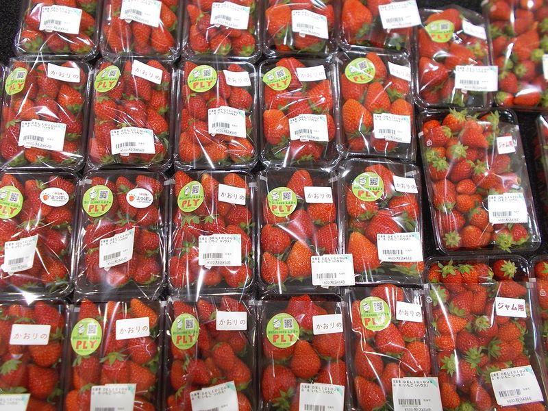 売場を真っ赤にするイチゴの群れ 右のジャム用はお徳用の小さいサイズ