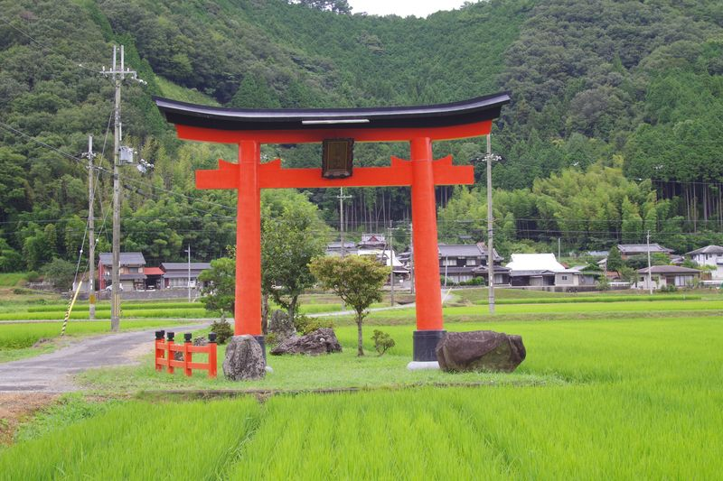大川稲荷神社の大鳥居の向こうに本殿がわずかに見える