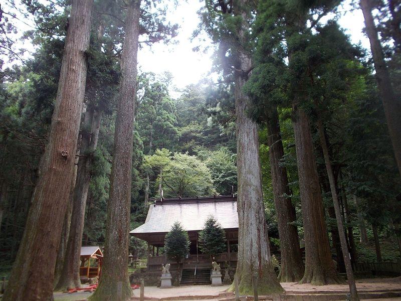荘厳な杉の木に囲まれた境内